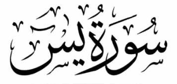Surah Yasin (Importance, Rewards and 6 Benefits)